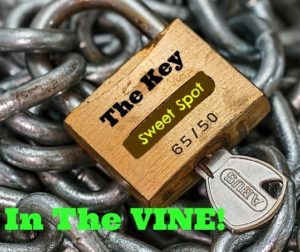 Keys To In The Vine final