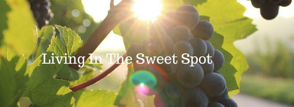sweetspotfeature