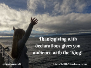 thanksgiving-with-declarations