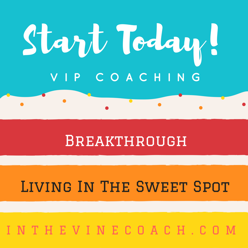 in the vine coaching